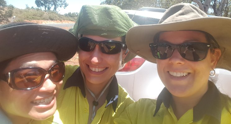 environmental assessments colleagues perth