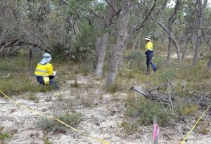 environmental impact assessment western australia